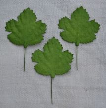 LIGHT GREEN MAPLE LEAVES (40mm) Mulberry Paper leaves